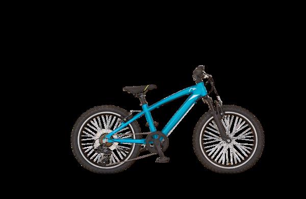 PROPHETE CATCH-UP Kids Bike 20