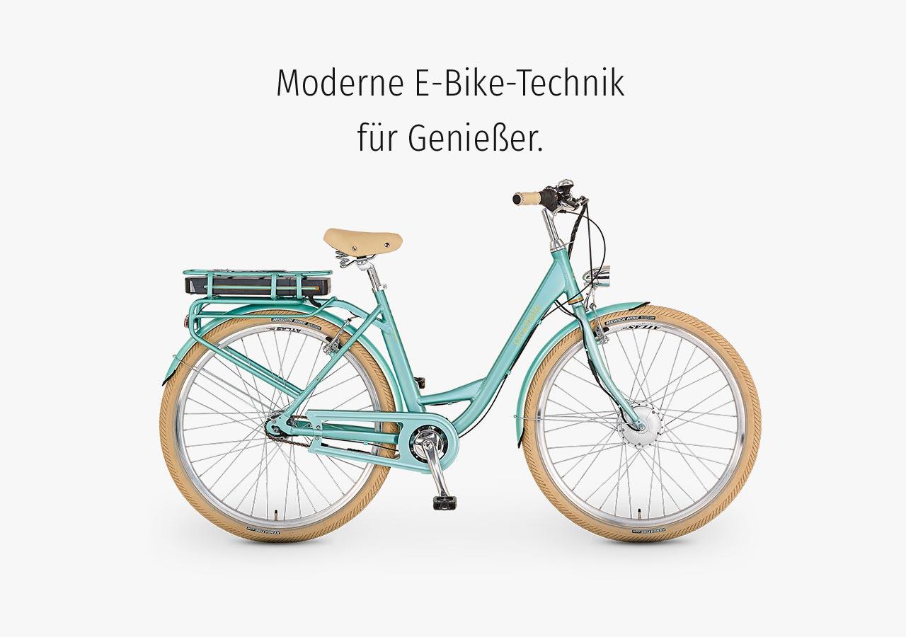 680e9e9fa86 Blaupunkt – PROPHETE E-Bikes jetzt mitBlaupunkt Antrieb